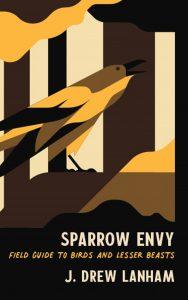 Sparrow Envy Book Cover